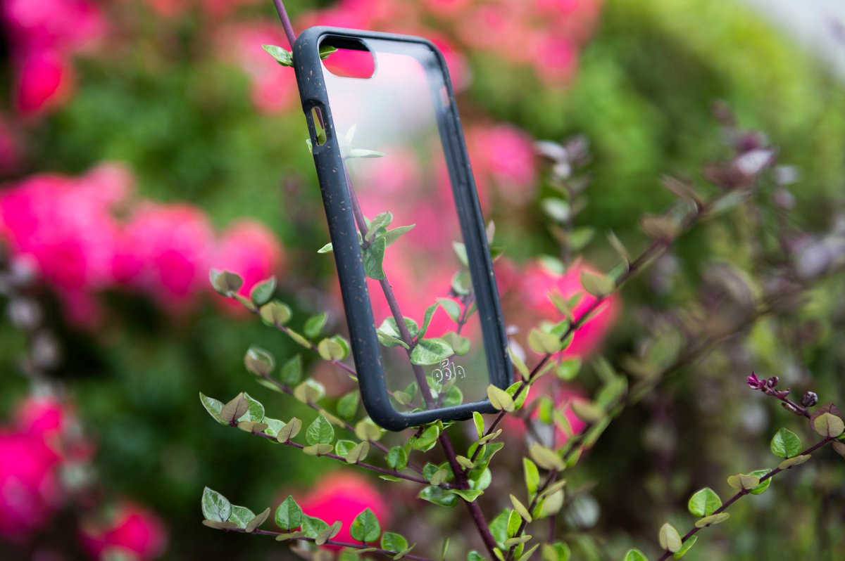 Why not a little late afternoon #photoshoot in the bushes outside @Hitfar with this awesome CLEAR @PelaCase #Compostable #ecofriendly pic.twitter.com/lM9FGawXS0