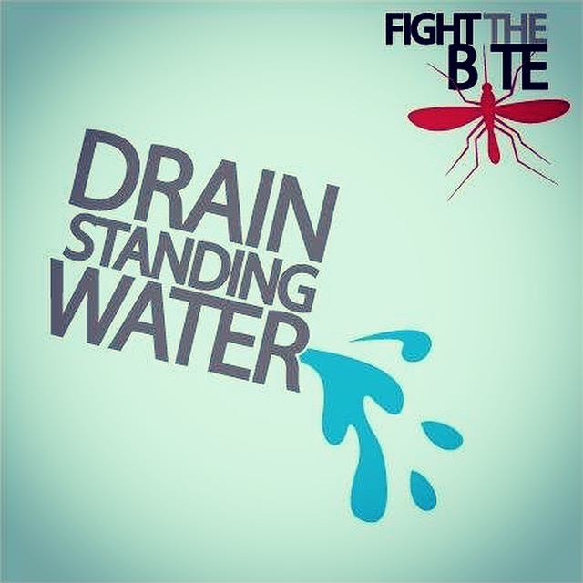 #TryItTuesday........With the rains we've been getting throughout the county, don't forget to #DrainAndCover to help #FightTheBite! https://t.co/b1iCuDLtmr