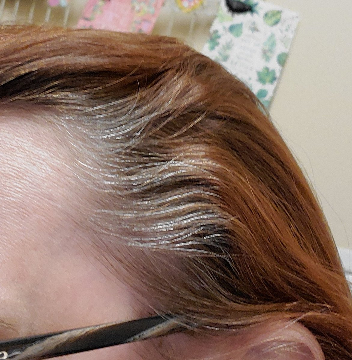 I have decided not to color my hair anymore. The chemicals aren't just bad for me, they are bad for the environment. With that said, I have grey hair! I earned every single strand! #grey Guess 3 am a grey panther now??? pic.twitter.com/wp1v4elI3W