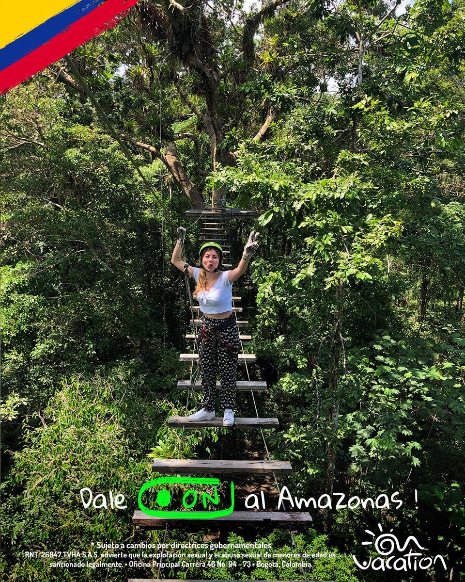 🟢 #DaleON al Amazonas! 🟢 plan recomendado es  hacer cuerdas y caminar entre las ceibas (árbol) más altas del amazonas  para disfrutar la selva con altura ! Reserva ya   Paga a cuotas sin intereses en https://t.co/ni4qz4lDS1 💻, llama gratis desde tu celular al #336 https://t.co/hbiFtTS2Do
