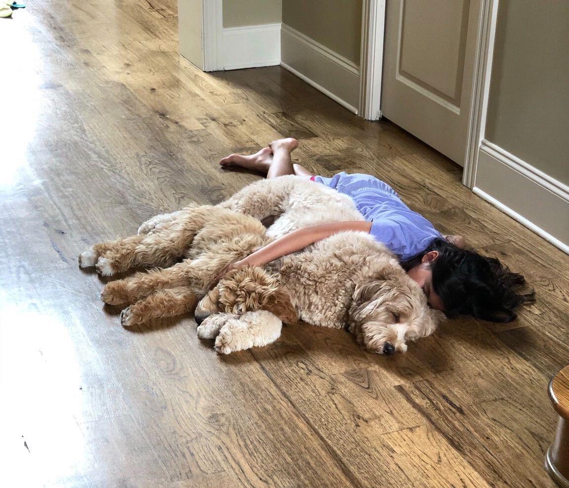 Anyone else want a nap?