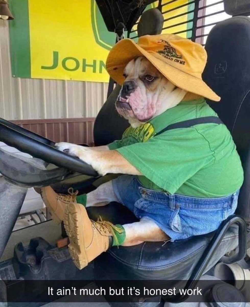 12/10 would let him mow my lawn.