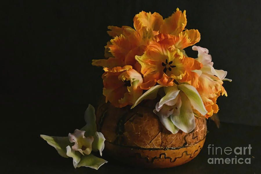 Tulips and Orchids #stilllife #floraldesigns #tulips #orchids #DianaMarySharpton #fineartforsale #FineArtAmerica #fineartportraits #floralportraits https://buff.ly/3cj5WhJpic.twitter.com/7iVd9wNMfu