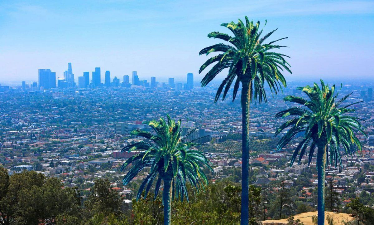 TUE 186. If you're going snowboarding, ______ me in; I'd love to go. count see get (ANSWER - CLICK LINK) https://buff.ly/2IeJ5VR  #LearnEnglish #ESL #TOEFL #EnglishClass #EnglishClasses #LA #LosAngelespic.twitter.com/PbXVIYj1A9