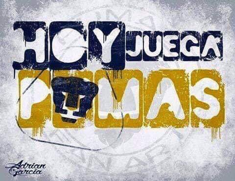 #nomolestar #soydepumas #orgulloazulyoro #hechoencu #awanterebel #comonotevoyaquerer #pumas #unam #goya #universidad #compartimoslaemocion #futazteca #CopaGNPPorMexico #yoamoelfutbol #encasa #corazonazul #pieldorada #vamosunam #tatolovers #pasion #quienestato https://t.co/gia5owMhOv