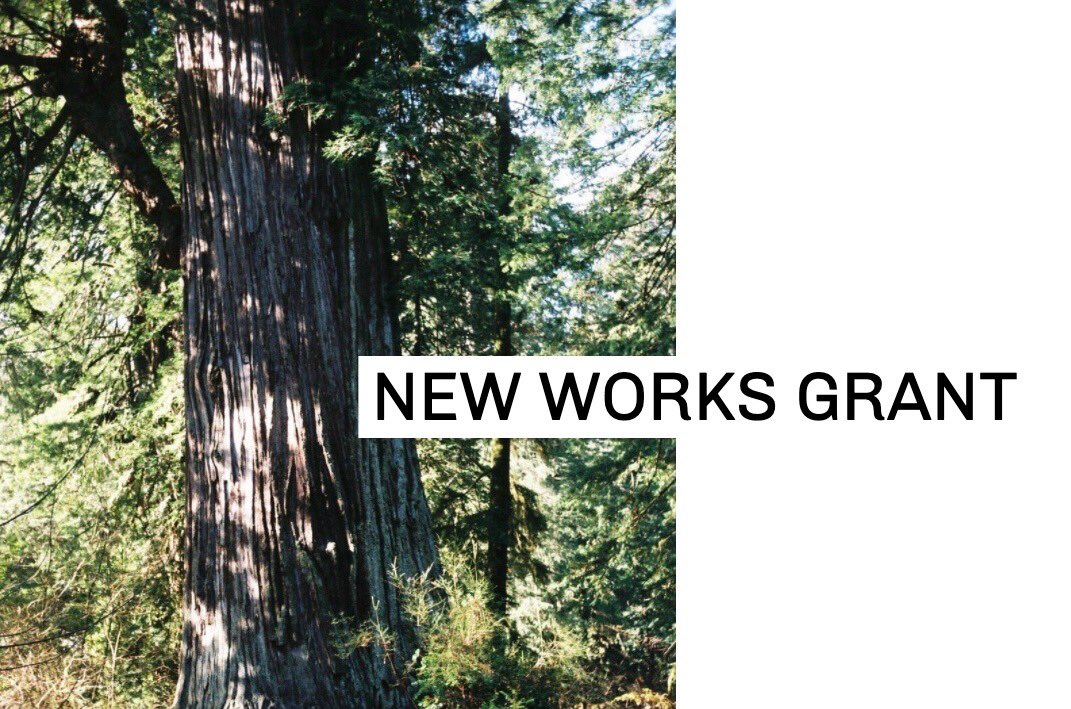 We're proud to share the first of our new FOREST FOR THE TREES Community Initiatives: THE NEW WORKS GRANT for Vancouver based Black filmmakers, which is the first in a series of initiatives we are building to strengthen our independent film community.   http://experimentalforest.ca/grants pic.twitter.com/DQdgZ0T4Q6