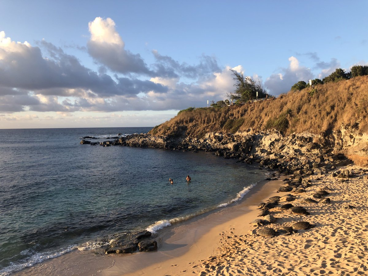 test Twitter Media - Mostly clear and warm on the north shore. #CMWeather #Maui #Hookipa #Surf #NorthShore #MagikalMaui #Honu #MauiNokaoi https://t.co/gsrGx7sUja