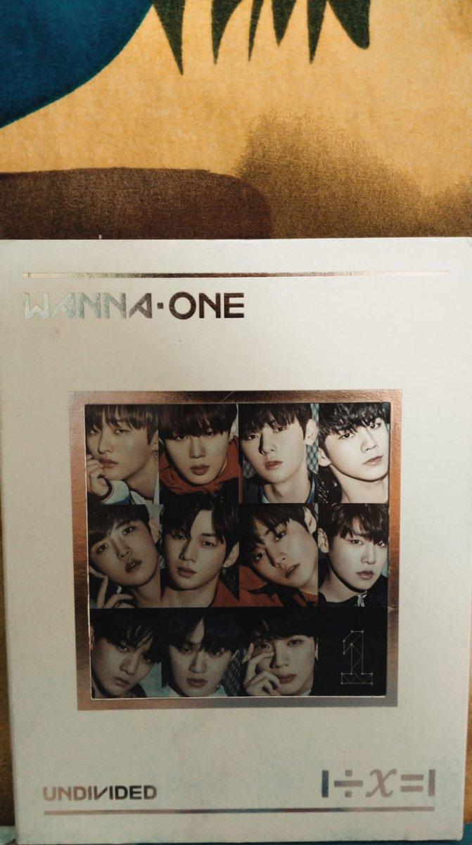 WTS ALBUM ONLY READY INDO  ALBUM WANNNA ONE UNDIVIDED #WannaOne  #album  #albumonlypic.twitter.com/uDSGIHmVI8