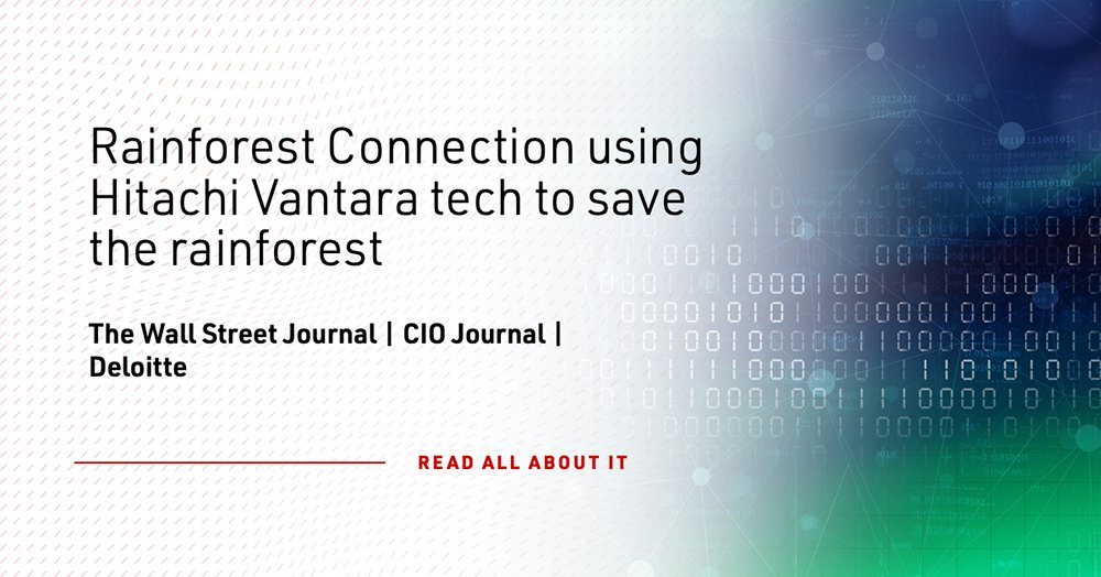 #AI, #cloud and #IoT have potential to be effective tools in saving the rainforest from illegal loggers. Learn how we are teaming with @RainforestCx to protect biodiversity: https://t.co/M1v8aFv4wB #ScaleDigital https://t.co/QGEx1U3YDp