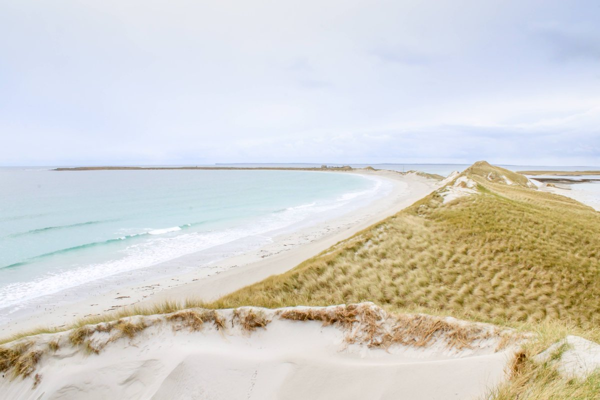 Enjoy these beautiful dunes at Cata Sand looking towards Tresness, Sanday, on the Orkney islands. Were imagining were there now! Orkney is a wonderful place for spectacular scenery and wildlife, particularly for birds and marine life. #bringingnaturetoyou