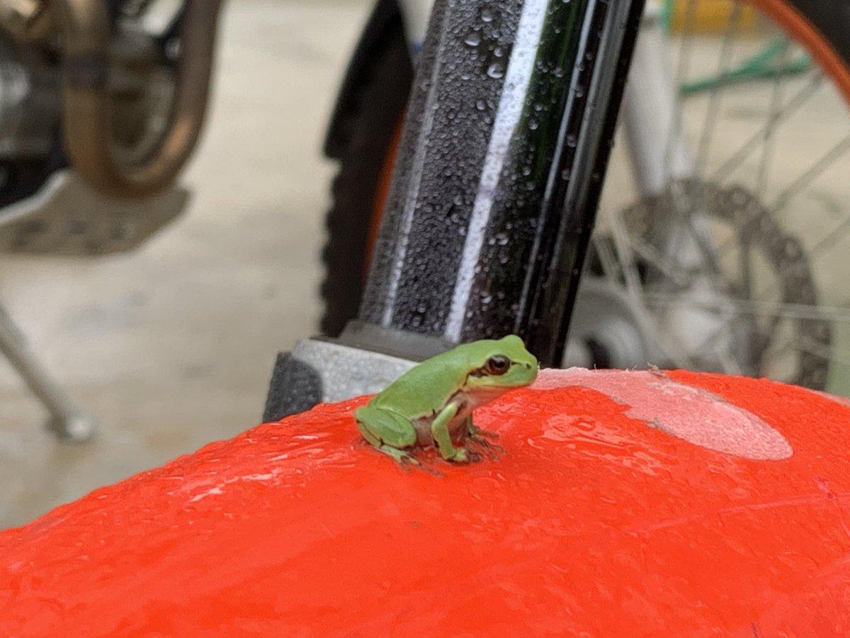他人のバイク勝手に乗るな!
