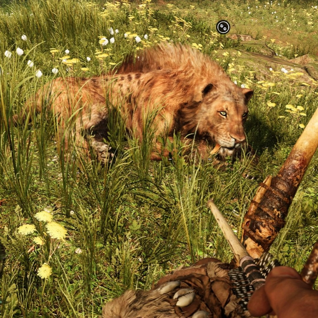 2 more pics of Toddler and Villan Toddler stays my favorite, although I have to tame a bloodfang #sabertooth now so.. I wonder how marvelous that #beast will be. #farcry #farcryprimal #gamer #console #ps4 #consolegaming #babies #loveit #bestfriends #tames #beasts #beastmasterpic.twitter.com/Qce1jYOO0Z