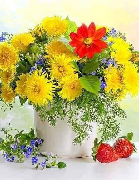 @Chrissyhowell16 Happy Wednesday Chrissy! ⛅🌹🍃⛅