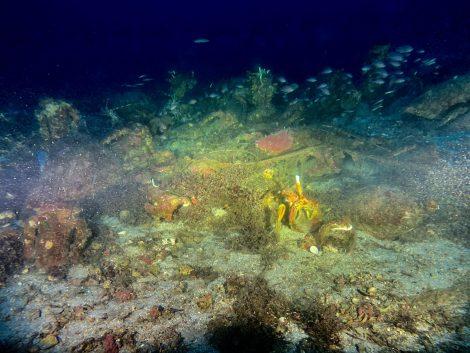 Archeologia, scoperto relitto carico di anfore nel mare di Ustica (FOTO) - https://t.co/0QJ6publ61 #blogsicilianotizie
