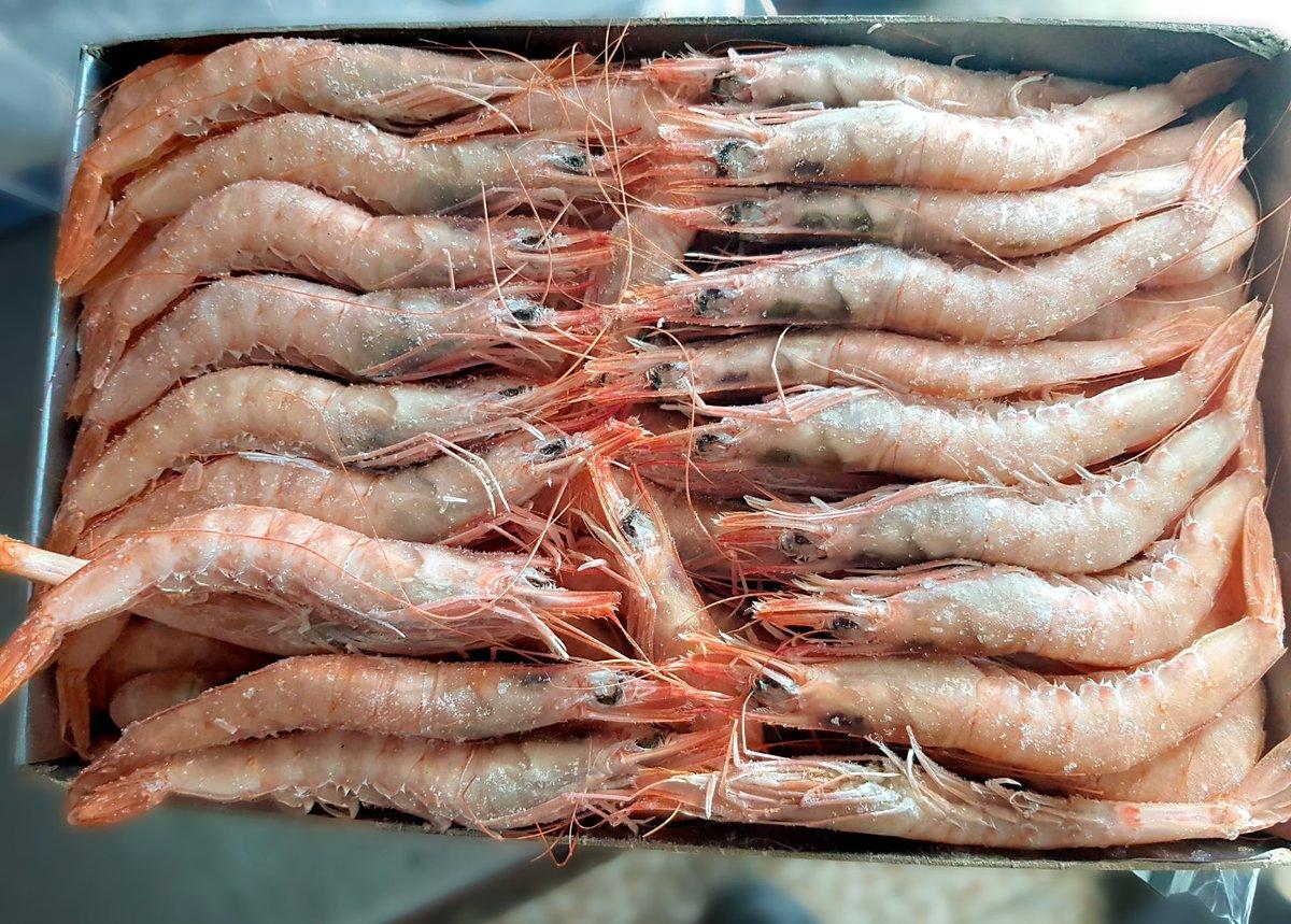📢 Os anunciamos que tenemos a su disposición 🦐 Gamba Blanca 75 piezas 25€ kg, cualquier día de la semana. Solo hasta el fin de las existencias. ☎️ Teléfono Fijo: (959) 401 404 - 📞 Teléfono Móvil: 630 660 546 😋 #Gamba #Huelva #Chocaito #lapalmadelcondado #mariscos #seafood https://t.co/u1dj0sFJT0