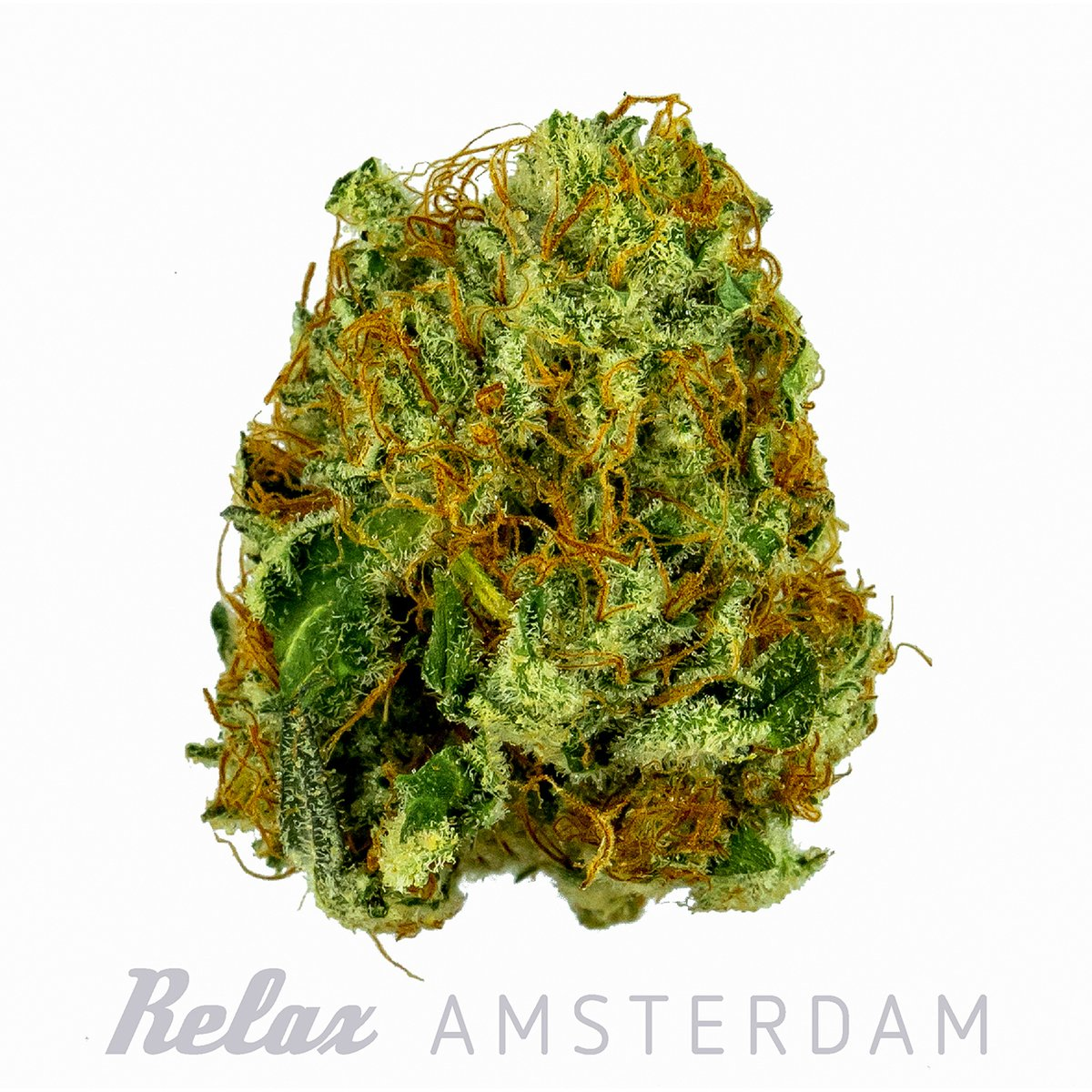 The history of medicinal cannabis goes back to ancient times. Ancient physicians in many parts of the world mixed cannabis into medicine to treat pain and other ailments. Initially, cannabis was reduced to a powder and mixed with wine for administration.<br>http://pic.twitter.com/ucCHVyIvci