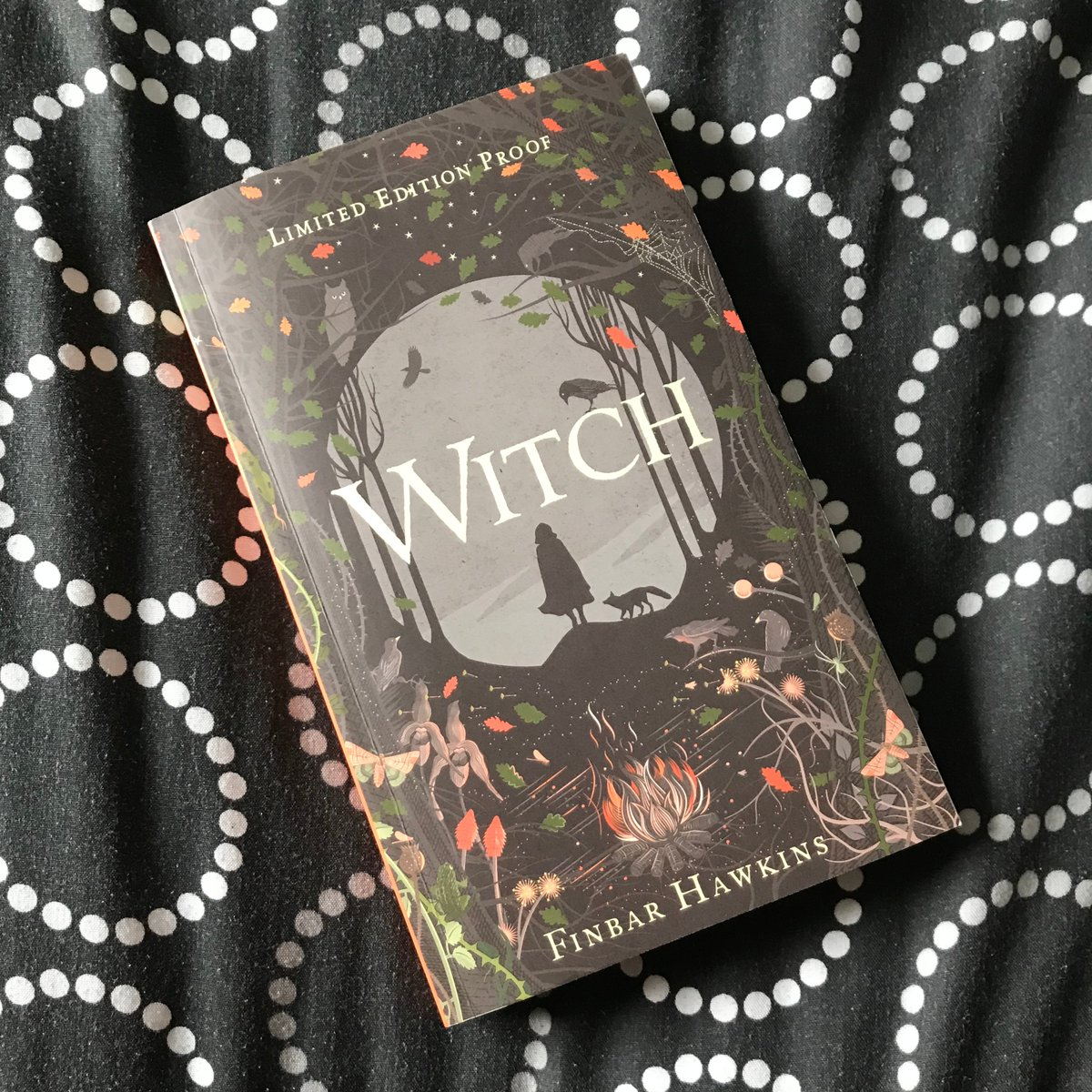 Just posted Book Review: Witch by Finbar Hawkins: https://t.co/XD62kyhwoX  A historical that's disappointing as a fantasy and a historical novel, and also potentially problematic.  I was #gifted this proof by the publisher for the purposes of providing an honest review. https://t.co/fld997pxOq