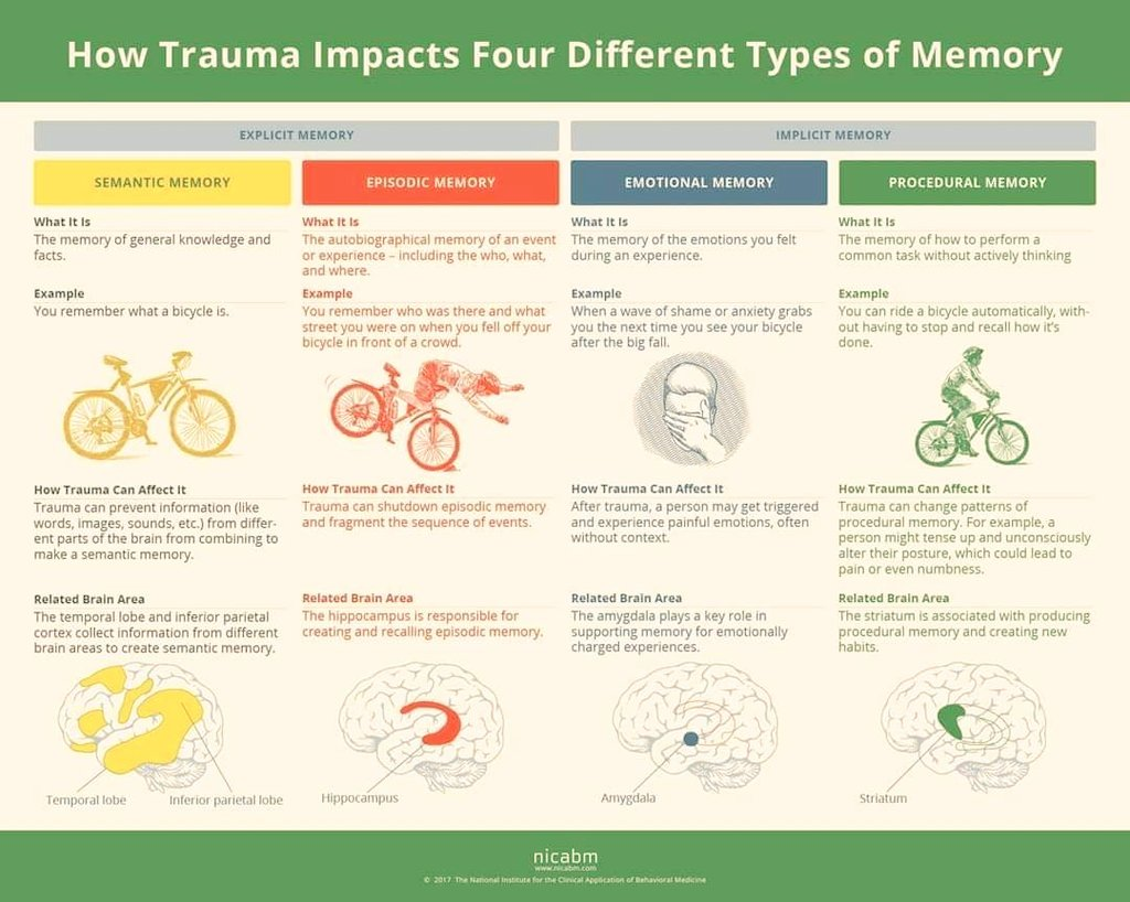 How Trauma Impacts 4 Different Types of Memory. #SEL #traumainformed