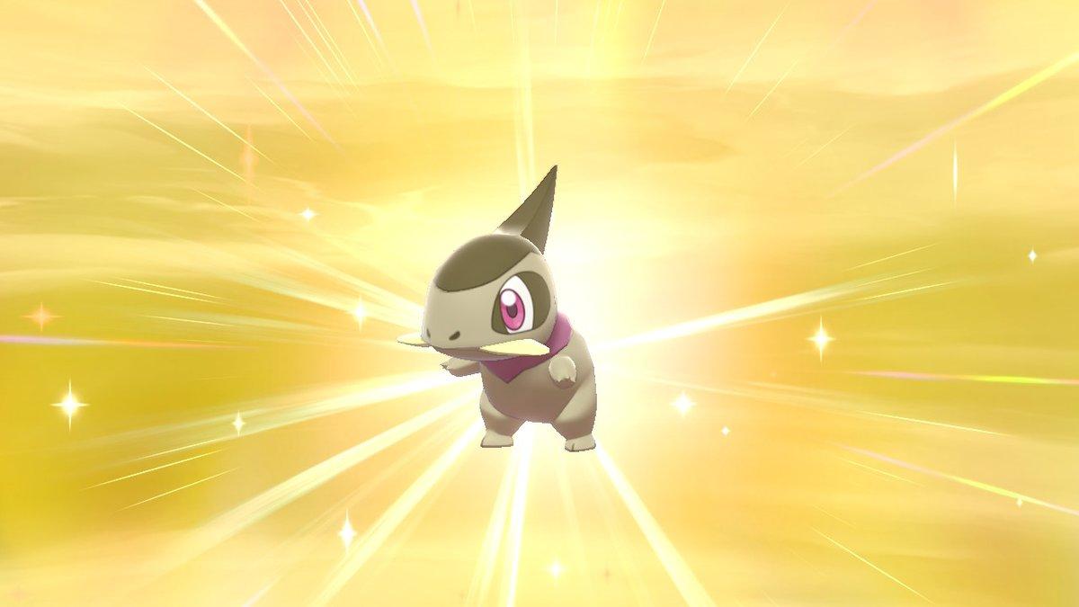 Nach 91 Eiern in Schild! :D Macht mit denen aus USUM zusammen 525! Not bad! Leider nicht weiblich. Wollte es Shanoa nennen. :D #Pokémonpic.twitter.com/zm5HCvk01V