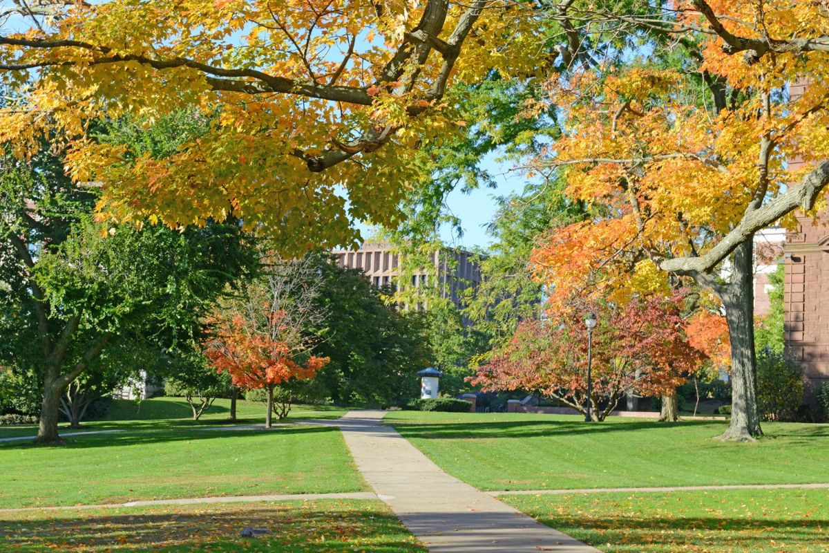 "test Twitter Media - Please visit our ""Reactivating Campus"" website for the latest information on our plans for Fall 2020, including information on in-person, online, and hybrid courses.  ➡️ https://t.co/JJkTPD8sbu https://t.co/QECgH0Y1TS"