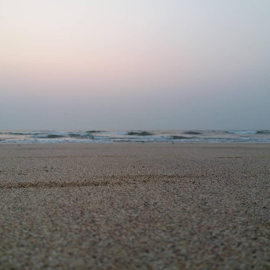White sand beach #beachesofkonkan#beachesofgoa#beach pic.twitter.com/BP9t3tu36h