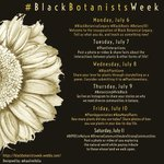 We are following #BlackBotanistsWeek and you should too!  So many great stories and new connections! #ethnobotany #botany