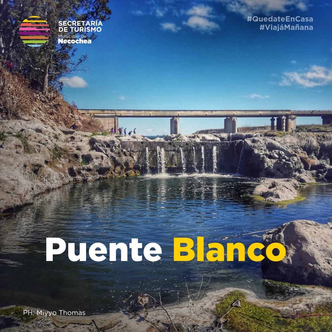El Puente Blanco, ubicado en la Ruta 86, es otro de los sitios naturales que posee el partido de Necochea.   ¿Conocés este maravilloso atractivo?  #NecocheaTeEspera #Necochea #Quequen #PuenteBlanco 🌉 #NaturalezaYVida #RioQuequen #Interior #PaisajesQueEnamoran https://t.co/nLcIiLC01y