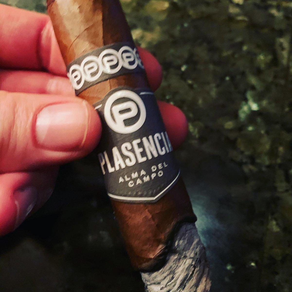 Plasencia Alma del Campo🔥🔥🔥💨💨💨a favorite 😉  #cigar #cigars #botl #sotl #humidor #smoking #cigarlife #cigarlifestyle #cigarro #cigarians #pssita #cigarlover #cigarworld #cigarpic #cigarsocialclub #cigarlifeguy #nowsmoking  #cigarswag https://t.co/ceKrMo6MMj
