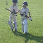 Image for the Tweet beginning: Calling all junior cricket sections