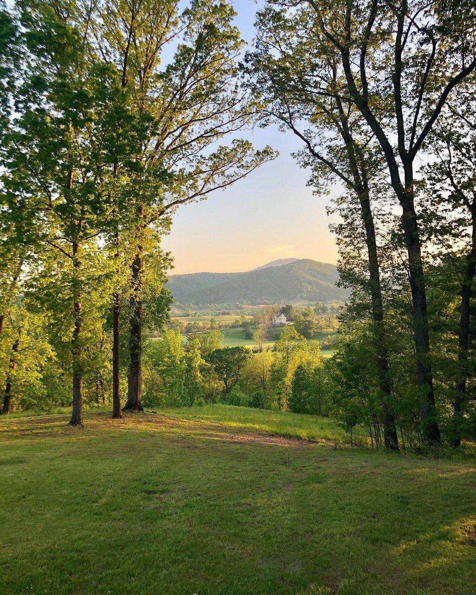 Serenity in the Blue Ridge Mountains  #TravelLocal #Virginia pic.twitter.com/83c5OnzT7U