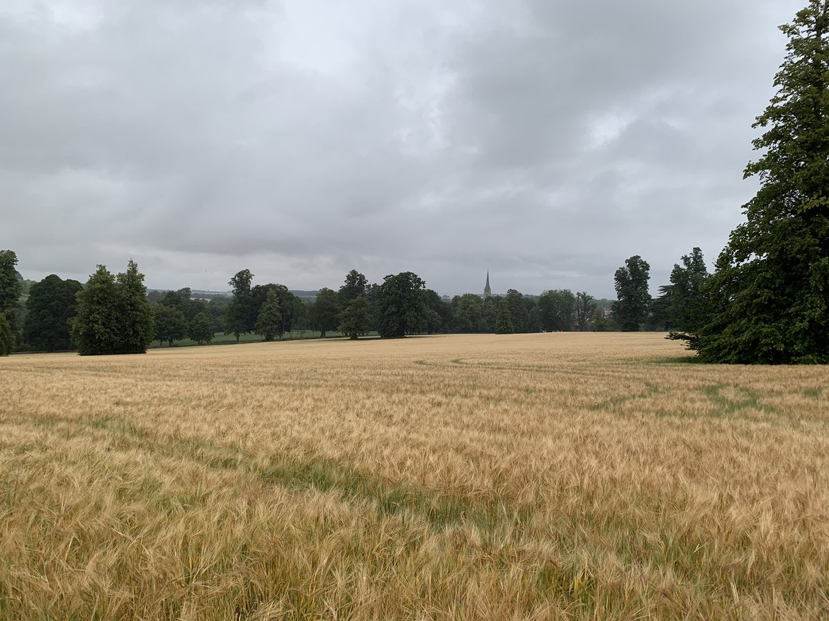 Three days later, an overcast sky, and an opposite perspective. #SaffronWalden <br>http://pic.twitter.com/q6czIGIYqY