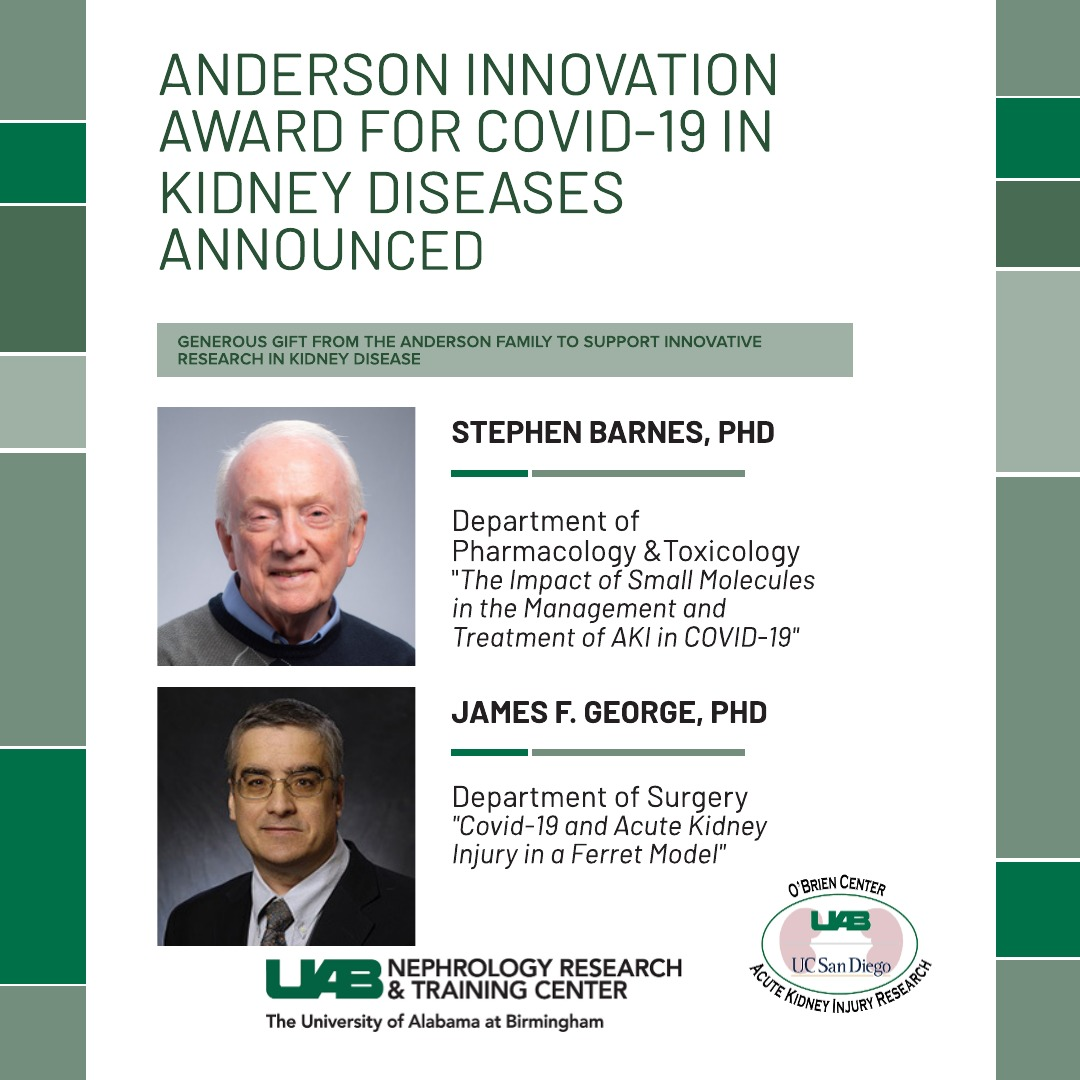 Due to a generous donation from the Anderson family to spur innovative, high-impact, and cutting-edge research in kidney disease. Two awards looking into COVID-19 related Kidney Diseases were awarded. #UABKidney #OBrienAKI @UABSOM @uabmedicine @UABSurgery @JamesGeorgeUAB