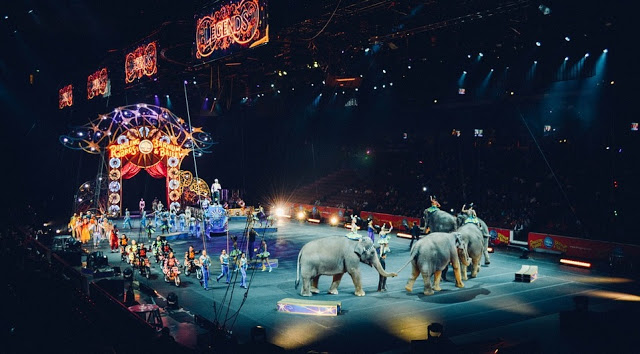 🎪Today is... Greatest Show on Earth - Featuring 30+ Circus Freebies! -Ebooks, videos, apps/games, printables, paper-crafts, recipes, crafts, coloring pages, more: https://t.co/xopmy2CzqR  #circus #GreatestShowonEarth #GreatestShow #PTBarnum #RinglingBrothers  #BarnumandBailey https://t.co/4sqNjv1AX8
