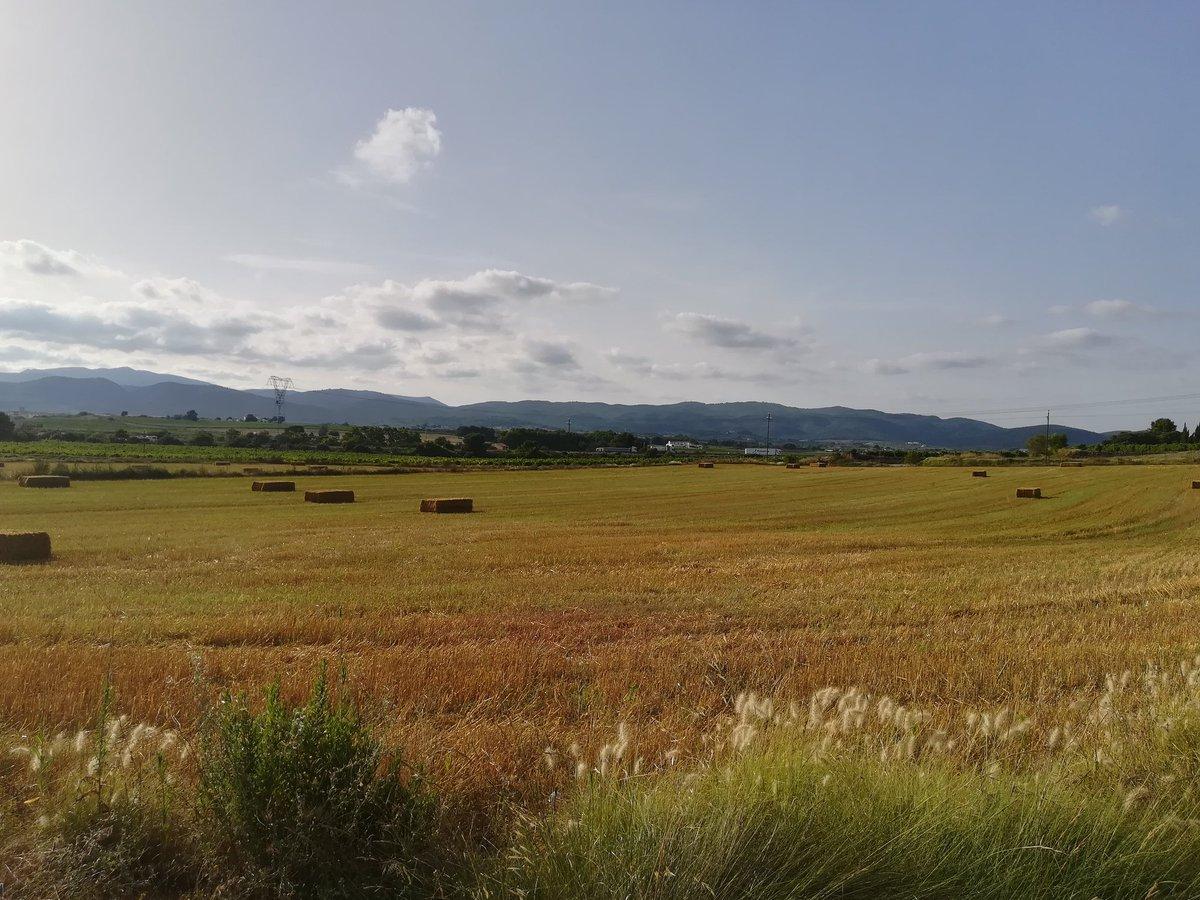 Avui hem fet ruta per 'La Comarca' #theshire #hobbiton pic.twitter.com/1TZeLzqIfd