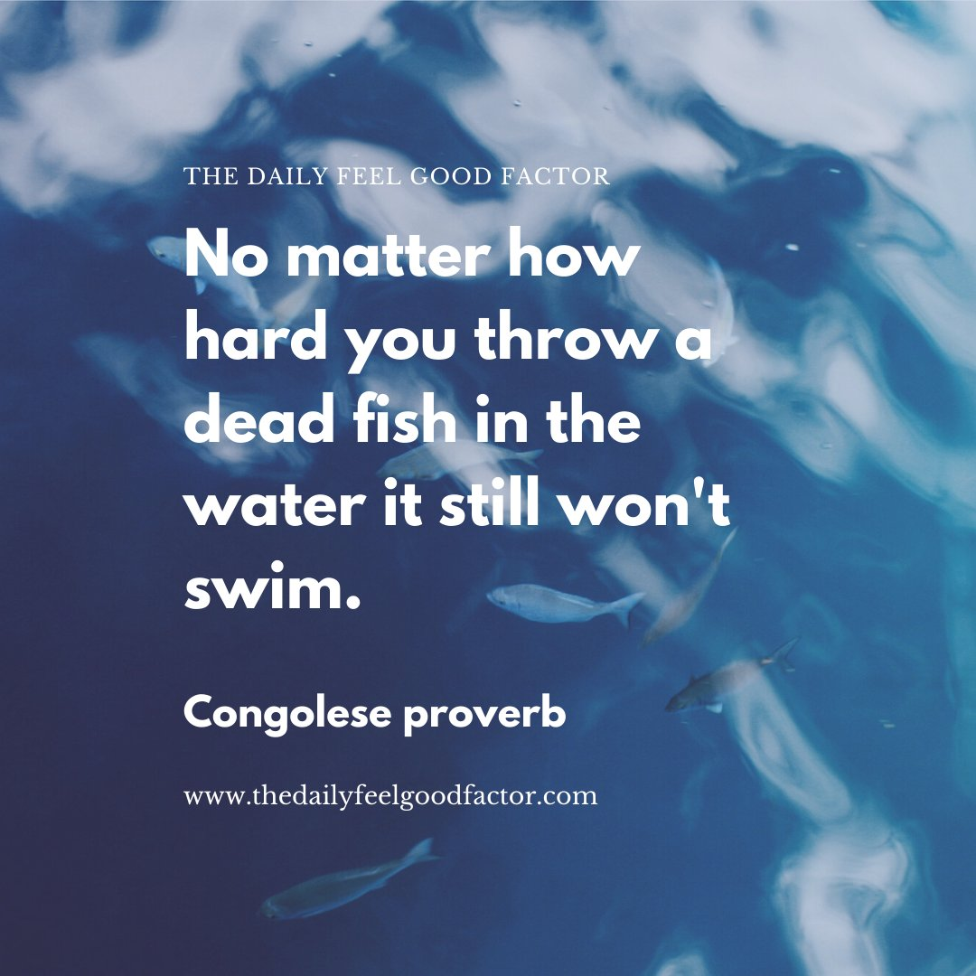 No matter how hard you throw a dead fish in the water it still won't swim. Congolese proverb #pilates #workout #fitness #exercise #hilifepilates #thedailyfeelgoodfactor #loveyourbody #loveyourself #healthylifestyle #quoteoftheday #motivationalquotes #inspirations #bekindpic.twitter.com/X1xlPAPBPR