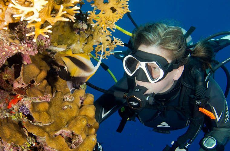 Introducing from N2Pix: Dive #Travel, #Trips and #Adventures -  https://t.co/qvYzbXql4y https://t.co/m8m4c8HkuC