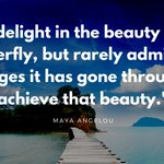 "Image for the Tweet beginning: ""We delight in the beauty"