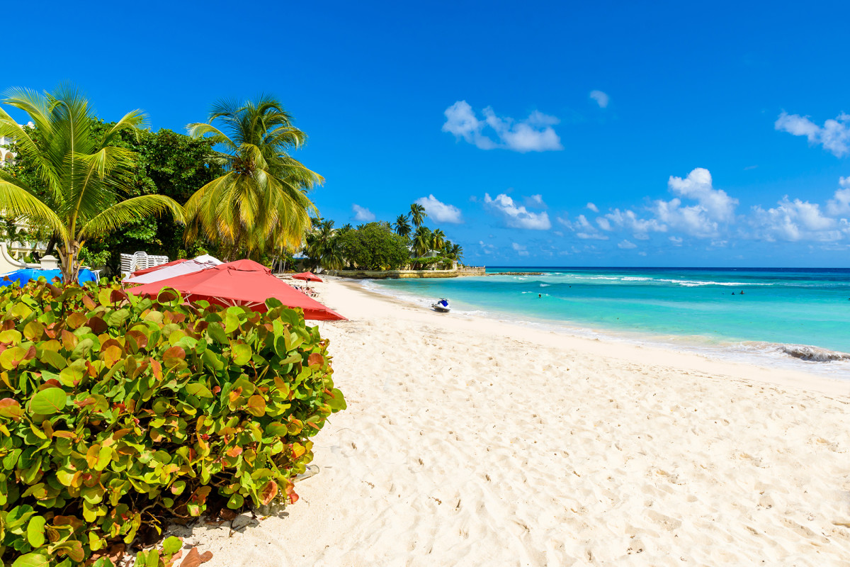 Barbados offering 12-month remote-work stay incentive to attract visitors trib.al/3rQlA3k