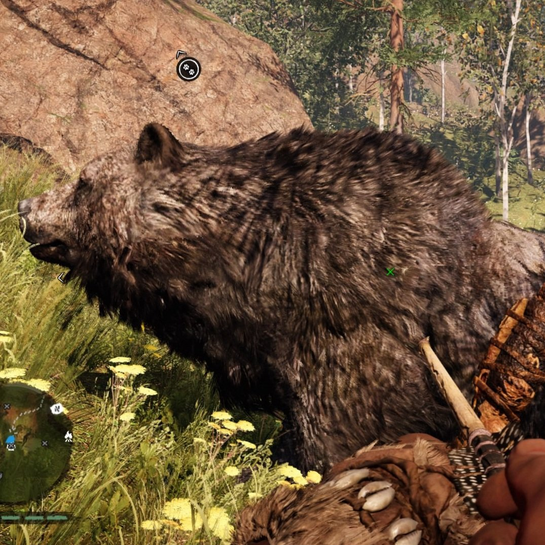 Two of my new #furbabies, the cave bear and the little asshole badger.#farcry #farcryprimal #gamer #console #ps4 #consolegaming #babies #loveit #bestfriends #tames #beast #beasts #beastmasterpic.twitter.com/YKAVjrUrPu