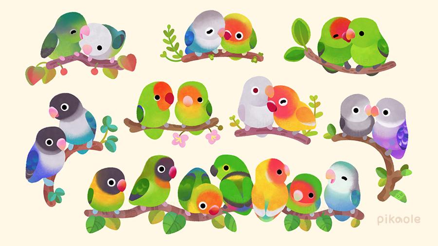 Lovebird 🦜
