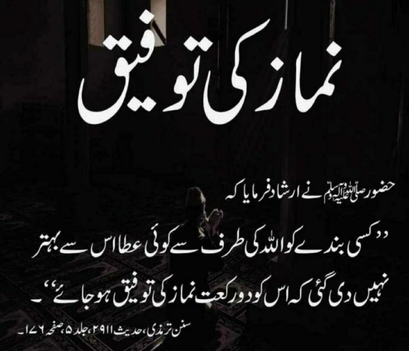 saifullah (@7826Saif) on Twitter photo 2020-07-09 07:18:35
