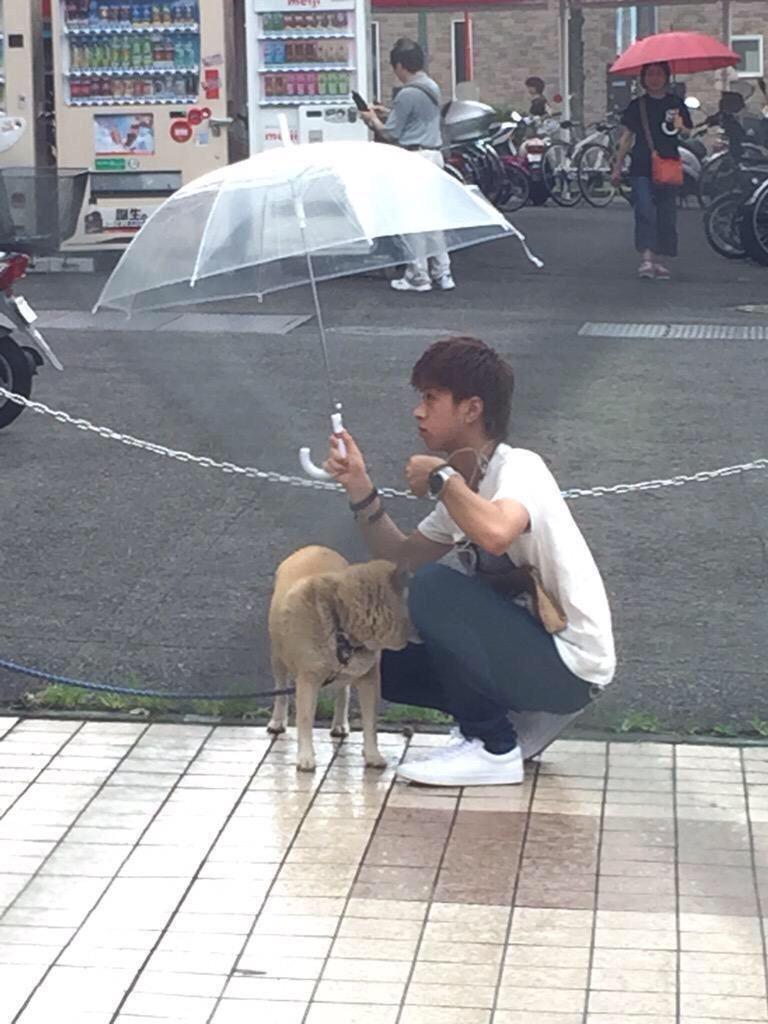 雨の日に外で待ってる犬に傘を差して飼い主を待つイケメン現る
