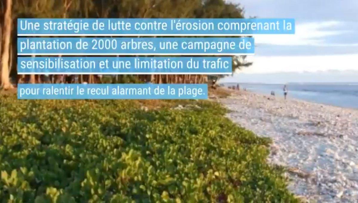 """🥇🌳La commune de St-Paul à #LaReunion remporte le """"Prix Thomas Joly pour la biodiversité"""", grâce à son engagement pour la restauration de la plage boisée de l'Hermitage.   Une action exemplaire en faveur de la #biodiversite.    @PavillonBleu #gotoreunion https://t.co/34HBMPY3Wo https://t.co/N3IwPKtKFk"""