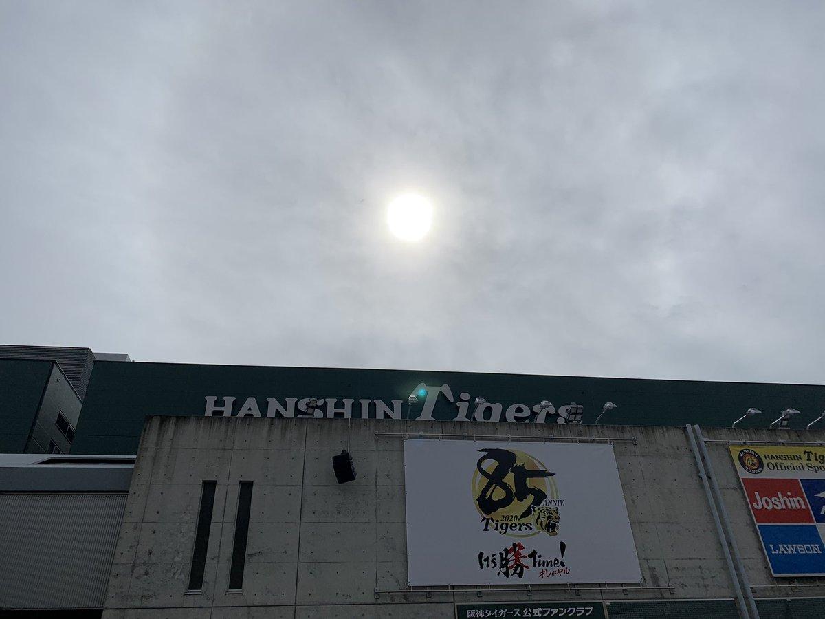 太陽が!🌤