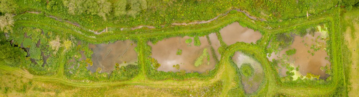 Had a great day photographing & filming a few sites for @N_Rivers_Trust. Aerial showing the new wetlands they have created to clean the water from a water treatment site before it returns to the river. Great idea and has created a habitat for a huge diversity of life.
