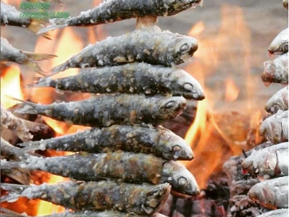 No os quiero dar envidia, pero esto es un manjar 😊😁👍🥂 #espetos #sardinas #marbella #andalucia #food #comida #foodporn #healthyfood #comidasana #foodlovers #foodphotography #yummyfood #picfood #chef #gastronomia #gastronomy #Andalucía #españa #spain