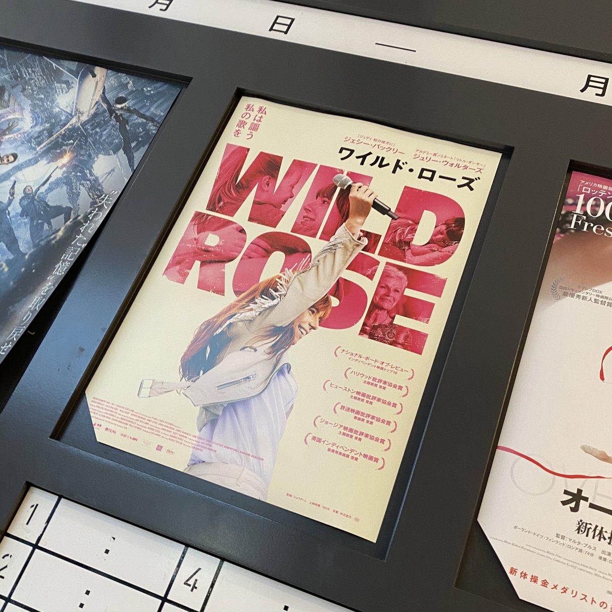 #wildrose  観てきました! ずっとサントラ聴いてるんるんしてます。 心の微細な動きまでお芝居で見れて素敵な音楽も楽しめる素敵な映画でした  映画館はいいなぁ🥺✨  それといまアイスが食べたいのに冷凍庫にアイスないしアイスのためにお外出るのも嫌だし嗚呼アイス…ってなってます。 アイスゥ… https://t.co/B6u9VyEI5y