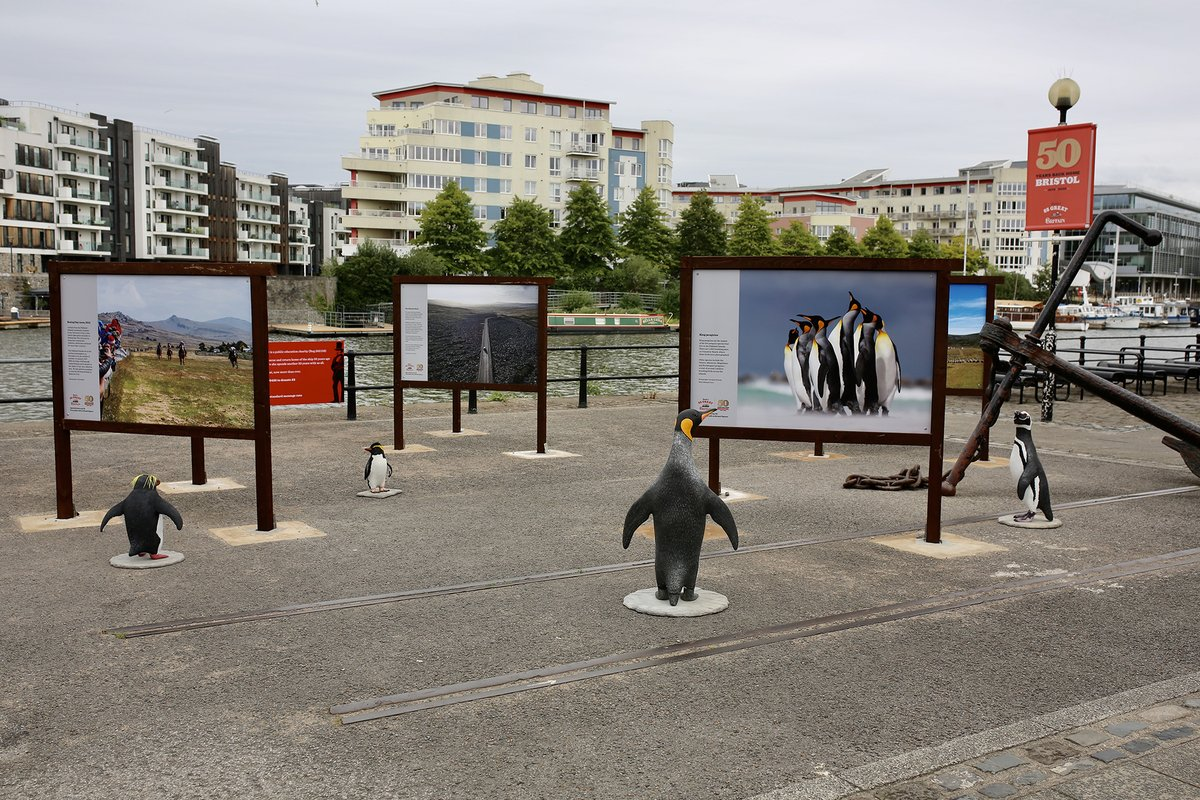 Our special visitors have arrived, made by @Amalgammodels! 🐧They're enjoying our photo exhibition!  Thanks to @FIAssociation & local businesses for supporting our 50th programme.  Expect to see these penguins in the dockyard later this summer. #SSGB50 https://t.co/zY70bIWPlW https://t.co/aWR8omE6JQ
