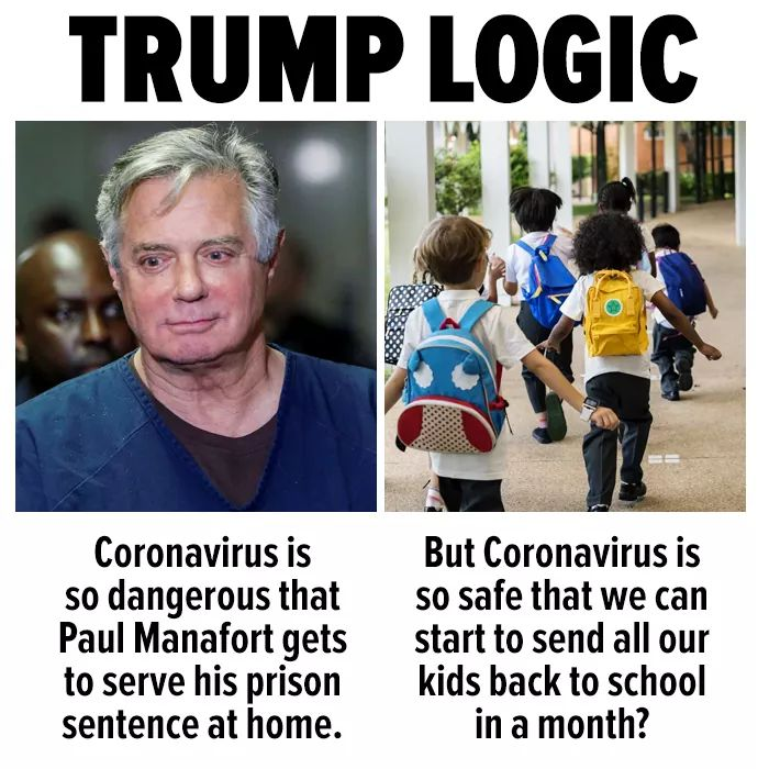 #thursdaymorning #thursdayvibes #COVID19 #coronavirus #ReopeningSchools is a bad idea #TrumpKnewAndDidNothing #ChildrensLivesMatter #childrenshealthdefense #TrumpIsACompleteFailure