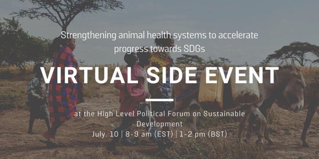 UofG's @CleavelandSarah will be speaking at this #HLPF event by @TheBrooke, responding to @OIEAnimalHealth with analysis of current state of #AnimalHealth systems, as part of achieving #SDGS, with examples of her work in #rabies #OneHealth.  Register ➡️ https://t.co/QqI1n6jKMs https://t.co/sc4QNYxBu8